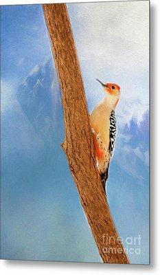 Metal Print featuring the digital art Red Bellied Woodpecker by Darren Fisher