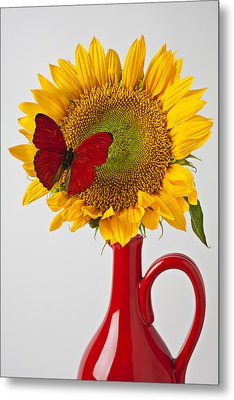 Red Butterfly On Sunflower On Red Pitcher Metal Print by Garry Gay