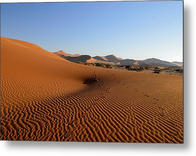 Metal Print featuring the photograph Red Dunes Of Namibia by Riana Van Staden