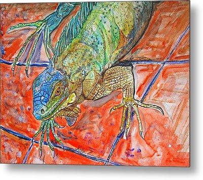 Red Eyed Iguana Metal Print by Kelly     ZumBerge