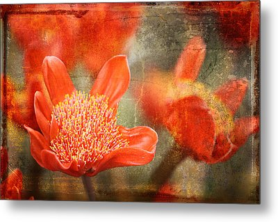 Red Flowers Metal Print by Larry Marshall