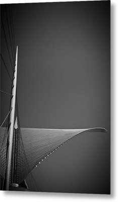 Ready For Flight Metal Print by Bernice Williams