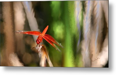 Red Heart Dragonfly Metal Print