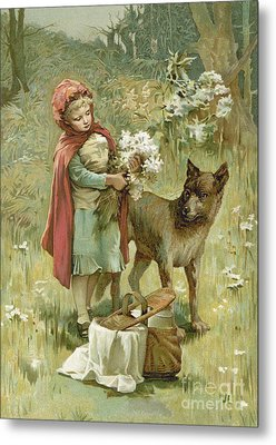 Red Riding Hood Metal Print by John Lawson