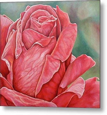 Red Rose 93 Metal Print