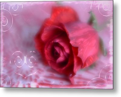 Metal Print featuring the photograph Red Rose Love by Diane Alexander