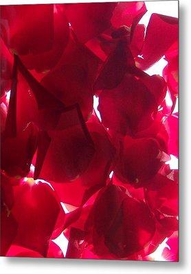 Red Rose Petals Metal Print by Anna Villarreal Garbis