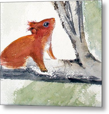 Metal Print featuring the painting Red Squirrel by Sibby S