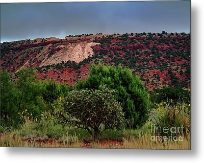 Metal Print featuring the photograph Red Terrain - New Mexico by Diana Mary Sharpton