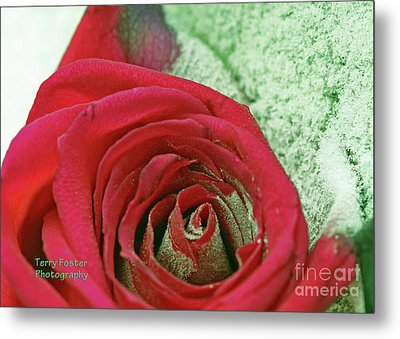 Red Metal Print by Terry Foster