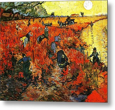 Red Vineyard Metal Print