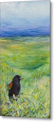 Redwing Blackbird Metal Print by Michele Hollister - for Nancy Asbell