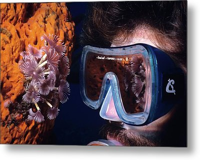 Reef Reflections Metal Print by Don Kreuter