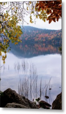 Reflecting Autumn Metal Print