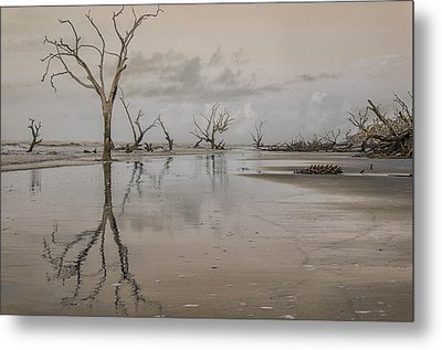 Reflection Of A Dead Tree Metal Print