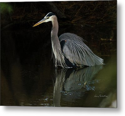 Reflection Of A Heron Metal Print by George Randy Bass
