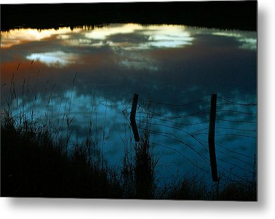 Reflection Of The Sky In A Pond Metal Print by Mario Brenes Simon