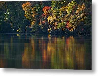 Reflections Of Colors Metal Print by Karol Livote