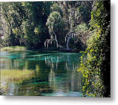 Reflections Of Rainbow Springs 2 Metal Print by Judy Wanamaker