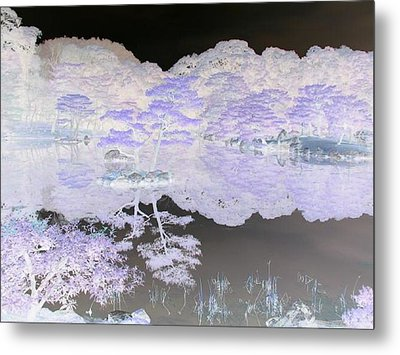 Reflections On A Surreal Pond Metal Print by Curtis Schauer