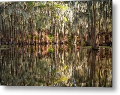 Reflections On The Bayou Metal Print