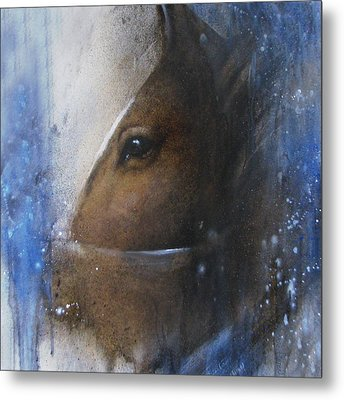 Reflective Horse Metal Print by Jackie Flaten