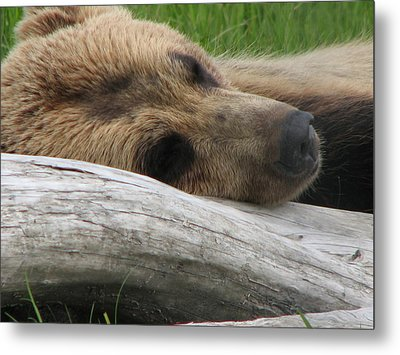 Relax I'm Sleeping Metal Print