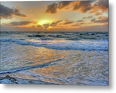 Restless Metal Print by HH Photography of Florida