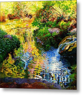 Ripples On A Quiet Pond Metal Print by John Lautermilch