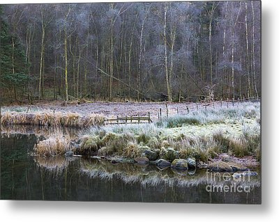 River Brathay Reflections And Silver Birch Metal Print