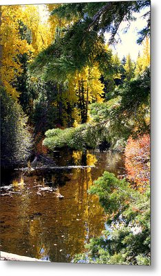 Metal Print featuring the photograph River Colors by Lynn Bawden