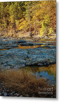 Metal Print featuring the photograph Riverside by Iris Greenwell