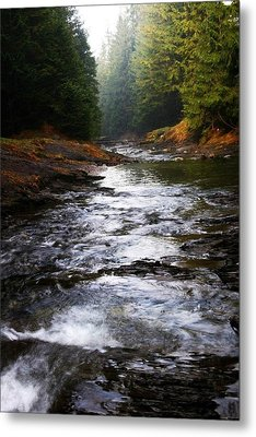 Metal Print featuring the photograph Rivulet by Votus