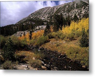 Rock Creek Fall Color Metal Print by Don Kreuter