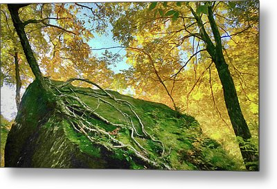 Metal Print featuring the photograph Rock Of Ages by Jeff Folger