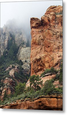 Metal Print featuring the photograph Rollings Mists by Phyllis Denton