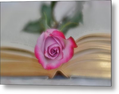 Metal Print featuring the photograph Romantic Read 2 by Diane Alexander