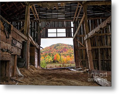 Room With A View Metal Print by Benjamin Williamson