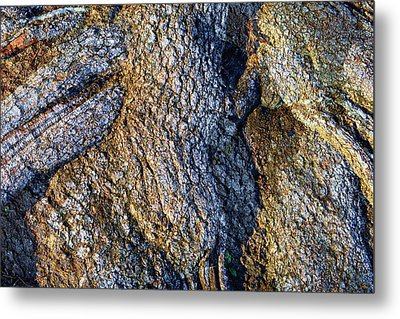 Metal Print featuring the photograph Root Waves by Glenn McCarthy Art and Photography