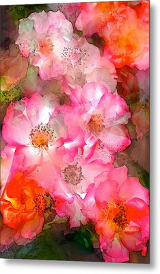 Rose 140 Metal Print by Pamela Cooper