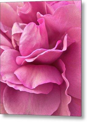 Rose Affair Metal Print by Gwyn Newcombe