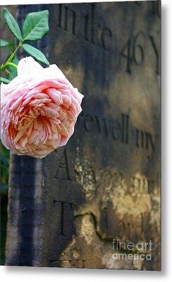 Rose At The Grave Metal Print