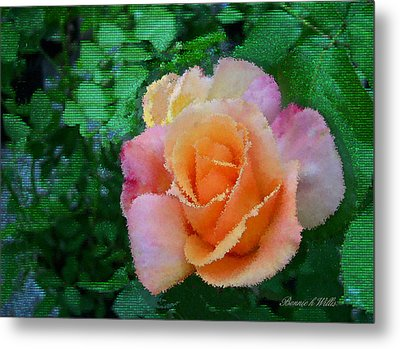 Metal Print featuring the photograph Rose by Bonnie Willis