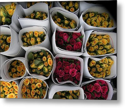 Rose Bunches Metal Print by Mohammed Nasir