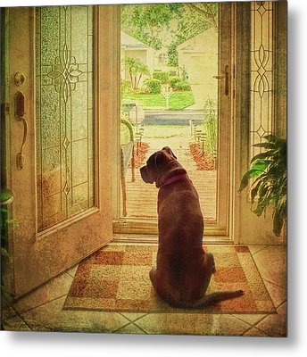 Metal Print featuring the photograph Rosebud At The Door by Lewis Mann