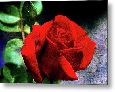 Roses Are Red My Love Metal Print by Susanne Van Hulst