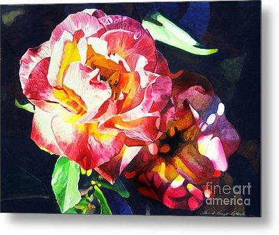 Roses Metal Print by David Lloyd Glover