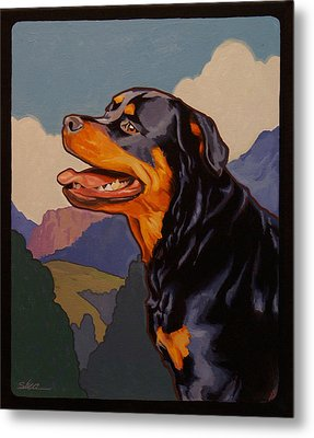 Rottweiler In Rottweil Metal Print by Shawn Shea