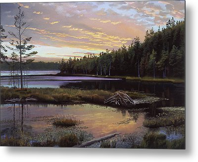 Round Pond Metal Print by Art Chartow