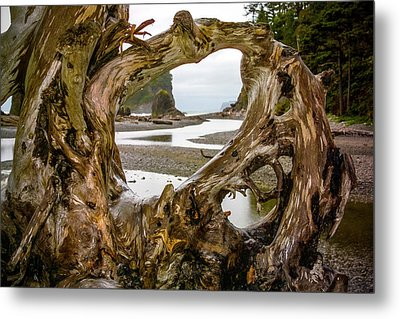Ruby Beach Driftwood 2007 Metal Print